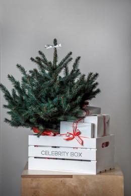 Celebrity-box